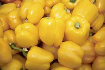 Sweet bell pepper is a favorite in both American and Italian cuisine.