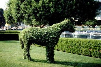 Some animal topiary frames are full-size.