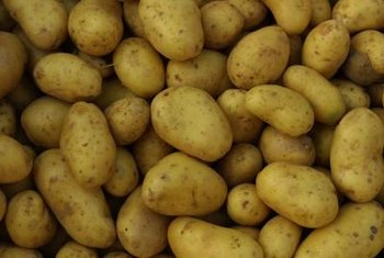 Almost all of the potatoes you eat were actually grown as clones.