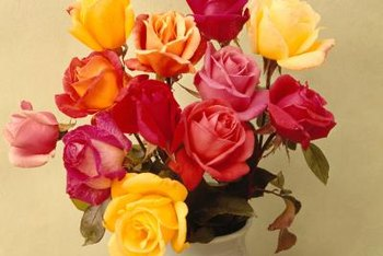 Colorful roses suggest English cottage style.