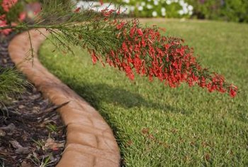 Discrete lawn edges add curb appeal to any property.