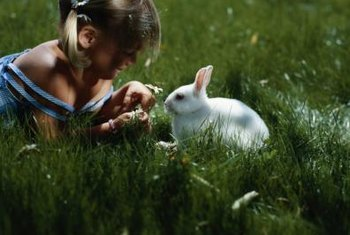 Rabbits may eat plants considered rabbit-resistant if their food source is scarce.