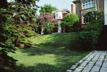Add brick edging around trees on a slope to hold in mulch.