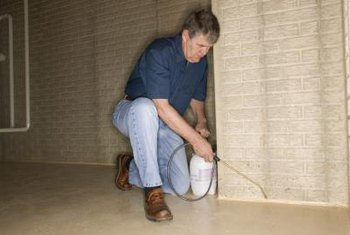 Landlords must hire an exterminator to eliminate a termite problem.