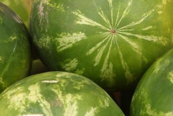 Tuning your ear to a watermelon thump lets you detect ripeness.