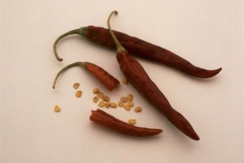 How much fire a hot pepper brings to the table depends on how many capsaicinoid-filled sacs it contains.
