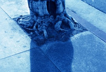 Tree roots grow slowly but may cause serious damage at the ground shifts around them.