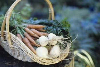 Grow root vegetables around the perimeter of the garden.