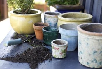 Good-quality potting mixes contain no soil and weigh a fraction of soil.