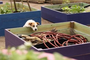Raised beds can be constructed on hard surfaces, including rooftops.