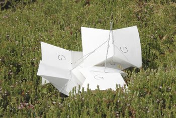 Readily available traps let you know when adult codling moths are infesting the yard.