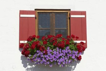 Window boxes that match the house color virtually disappear.