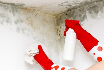 To avoid health issues, don't let mold take hold in your home.