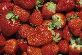 There are two types of strawberries, June-bearing and everbearing.