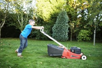 The American Academy of Orthopedic Surgeons recommend children be at least 12 years old before being allowed to use a walk-behind lawnmower