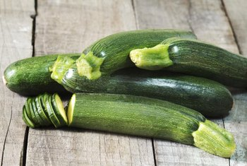 How to Grow Black Beauty Zucchini in a Container | Home Guides | SF Gate