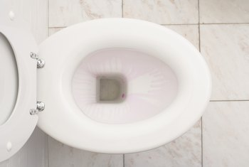 Low water in the bowl may mean a partial blockage in the toilet.