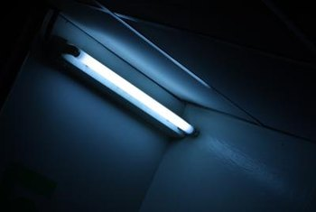 Fluorescent Light Bulbs Last Longer And Are More Energy Efficient Than Incandescent