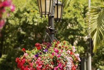 Lights on posts can illuminate plants at night.