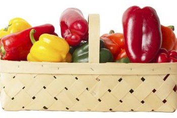 With sufficient protection, bell peppers can thrive.