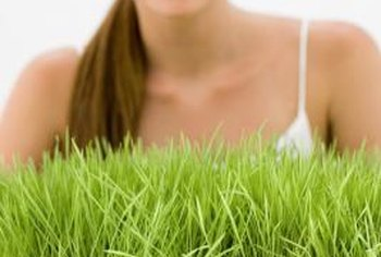 Sod, or turf, may develop diseases caused by pathogens or insects.