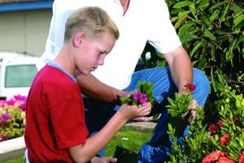 How to Take Care of Your Garden | Home Guides | SF Gate Er Flower Garden Design Html on yard designs, vintage wallpaper designs, flower wallpaper, landscape designs, flower gardens with fountains, flower gardening, flower display, flower fences, flower coloring pages, patio designs, swimming pool designs, kitchen designs, flower background, flower desktop, flower arch, backyard designs, flower gardens for small yards, flower arrangements, flower beds, flower gardens for florida,