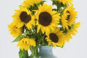 Sunflowers in a blue vase are the perfect accent in a yellow and blue bedroom.