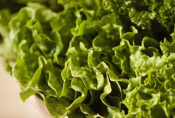 You'll eat plenty of green leafy vegetables on Dr. Oz's diet plan.