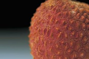 For the best flavor, allow lychee fruits to fully ripen on the tree.