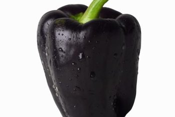 The flesh of most purple peppers is still green.