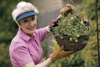 Million Bells' mini-petunia flowers make charming hanging basket fillers.