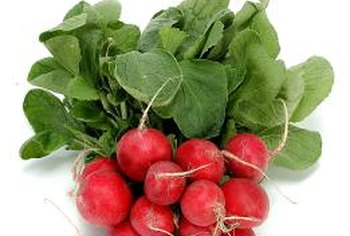 How long does it take for radishes to mature