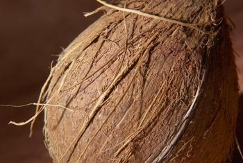 Coir is made from the fibers of a coconut husk.