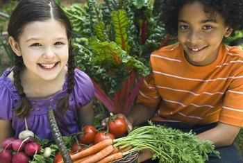 Homegrown organic vegetables have high nutrient content.