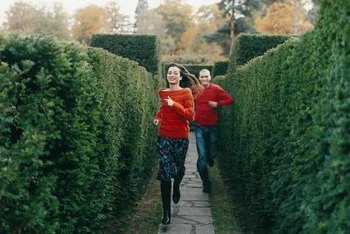 Enjoy walking or relaxing in a hedge maze.