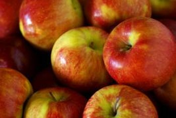Apples are just one of the types of fruit that can be grown on ultra dwarf trees.