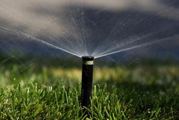 Shut off lawn sprinklers in high-rainfall periods to prevent pooling.