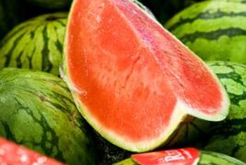 Seedless varieties of watermelon can be grown in the home garden.