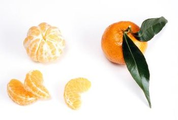 Tangerines have a sweet, citrusy flavor when ready for harvest.
