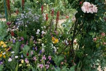 Cottage gardens contain plants of various heights to create depth and interest.