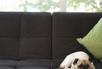 He spends more time on the sofa than you do, so re-upholster your vintage couch to complement your dog.