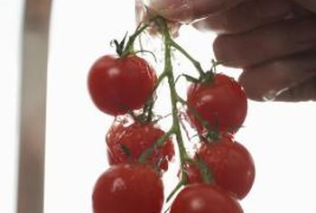 Pruning cherry tomatoes can lead to bigger, better yields.