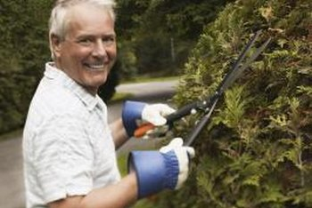 "Choose the right ""arb"" for your hedge."