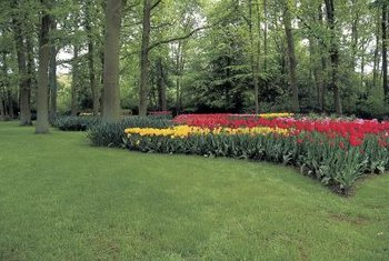 Use a garden border fence to separate the lawn and flower bed.