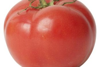 """Big Boy"" tomatoes produce fruit all summer."