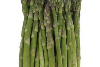 Snap asparagus stalks off at the base to harvest them.