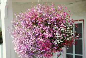 Insulating foam lightens the load in a hanging flower basket.