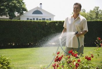 Overspraying may harm your flowers and consume too much water.