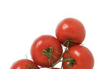 Healthy tomatoes have firm bottoms with no rot symptoms.