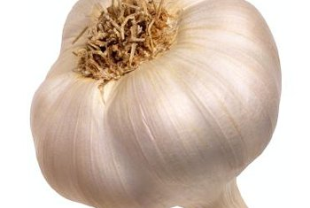 Garlic contains antioxidants that help fight free radicals.